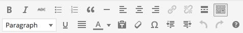 WP-text-editing-panel