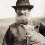 Sussex Shepherds